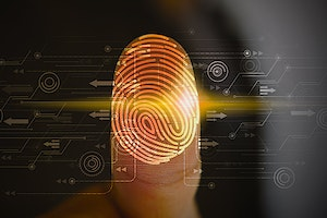 Top 5 ID Protection Services: Editor's Picks for 2021