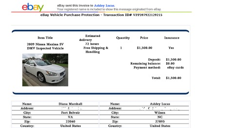 Example of an eBay scam posting