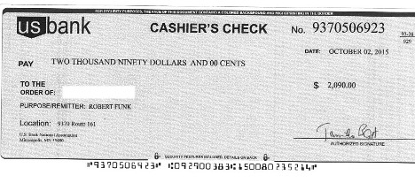 Example of a fake check